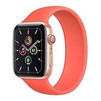 Apple Watch SE Smart Watch Repair